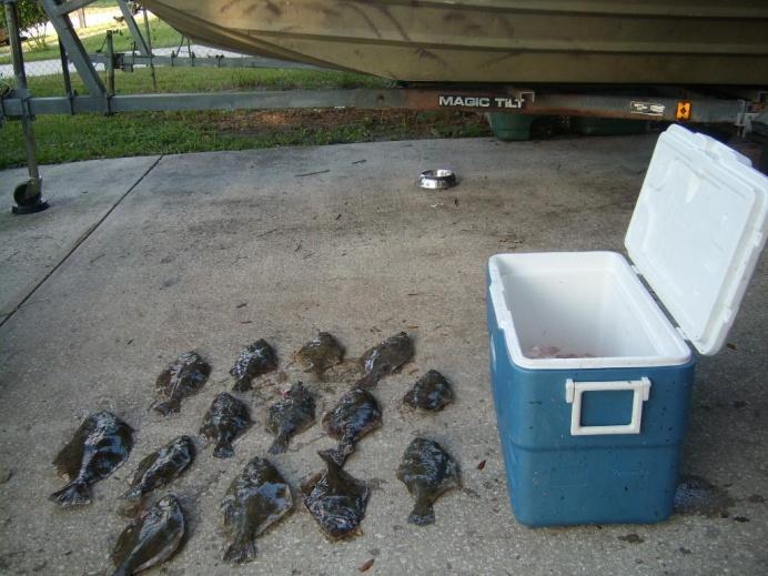 A couple Flounder and a sheepshead 9-24-11-flounder-trip-9-24-11-jpg