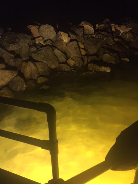 First trip of 2016-flounder3-jpg