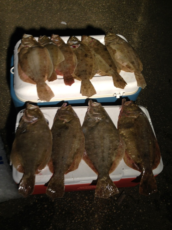 Wade Limit 2-flounderlimit2_14-011-jpg
