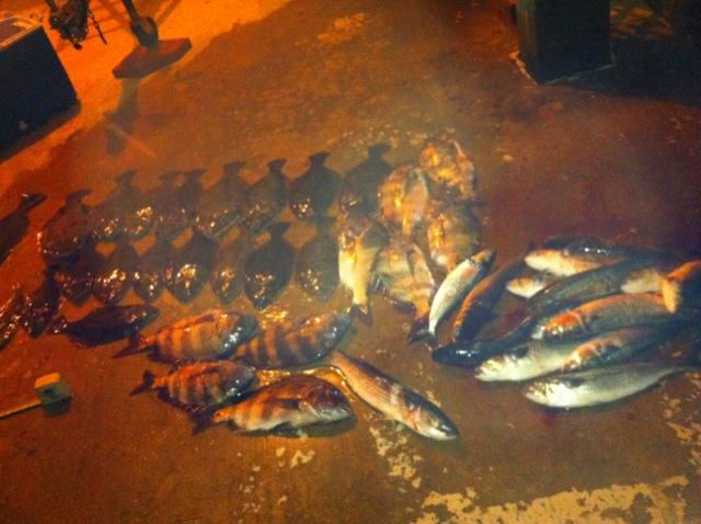 Monday Night Floundering-floundermonday-jpg