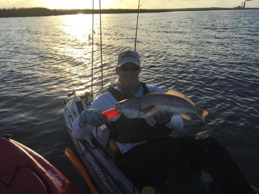 Simpson River - 8 Feb-fls-redfish-8-feb-15-2-jpg