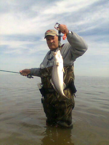 Some Louisiana Trout Action-font-jpg