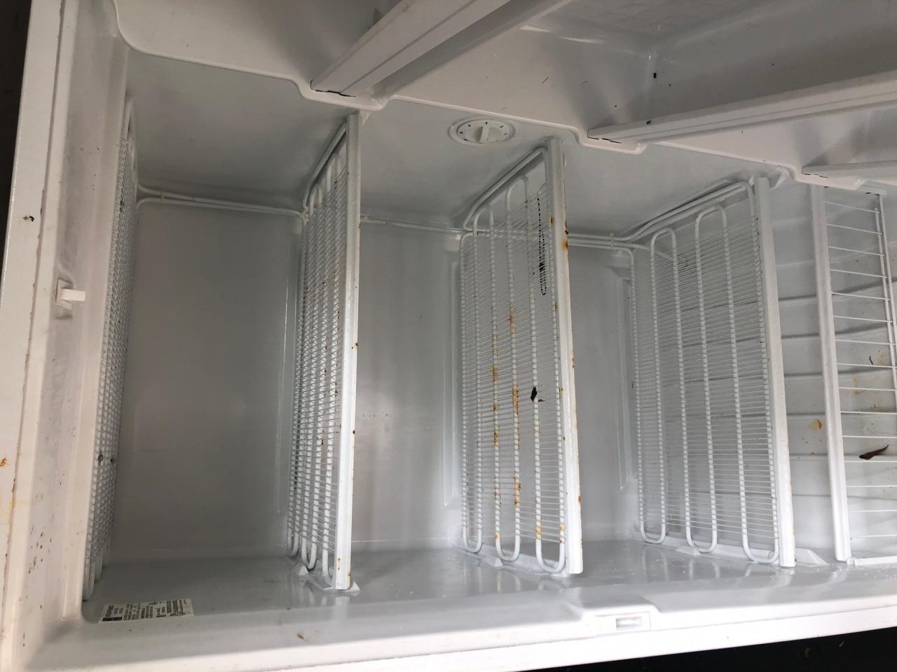Free Fridge and  stand up Freezer- Pace-freezer2-jpg
