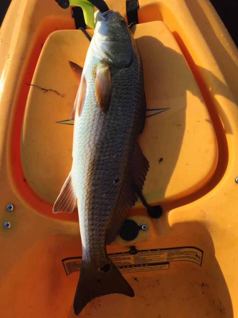 Choctawhatchee Bay, 09/03/17-fullsizerender-6-jpg