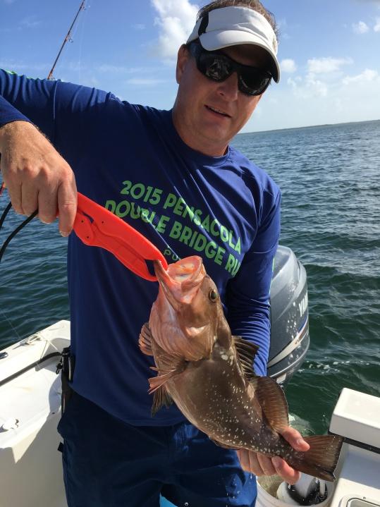 Big Pine Key-grouper-jpg