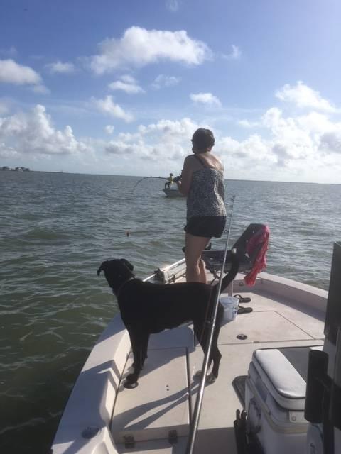 West Galveston Bay schoolie trout-hook-set-jpg