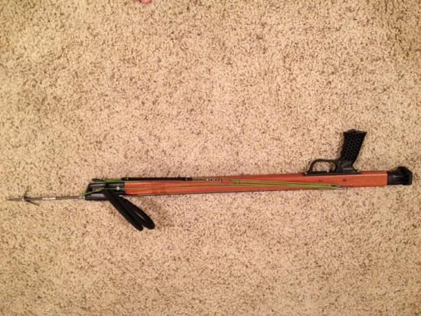 JBL woody speargun-image-1663236770-jpg