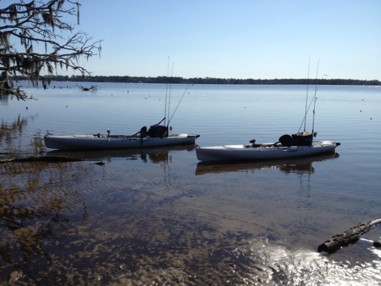 New Hobie with reports-image-1739204060-jpg