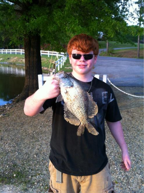 Biggest Crappie I've ever caught!-image-2052073265-jpg