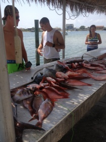 Hot Spots Charters - 5/18 and 5/20 Matt Mcleod-image-3-jpg