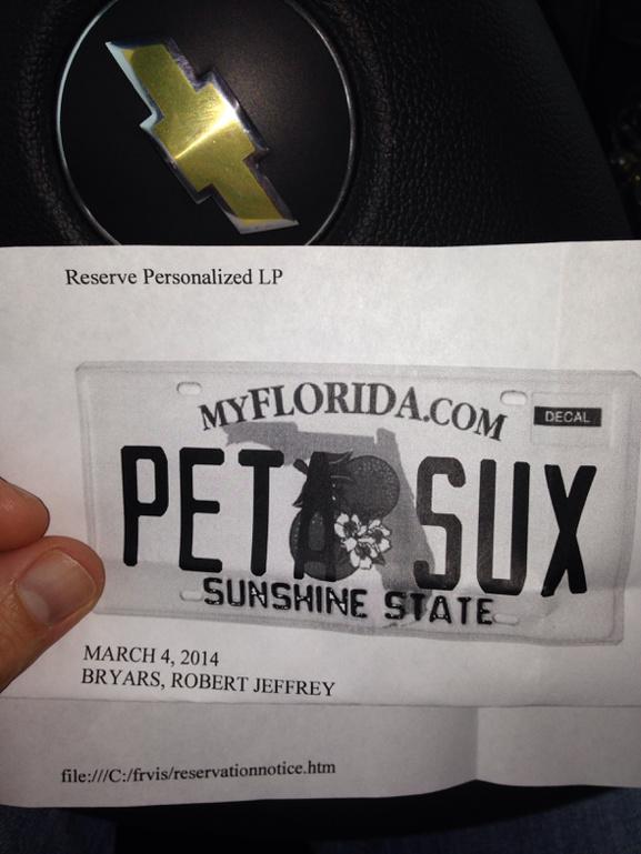 New license plate-image-3651048880-jpg