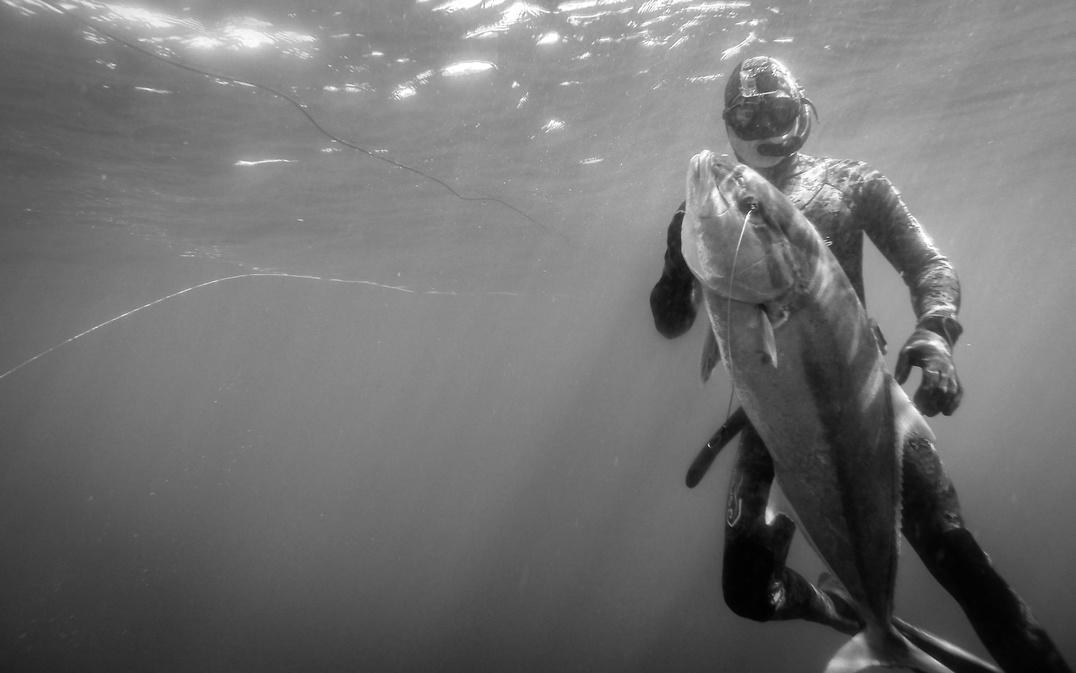 2/8 Freedive Spearing in Destin. AJ's-image-jpg