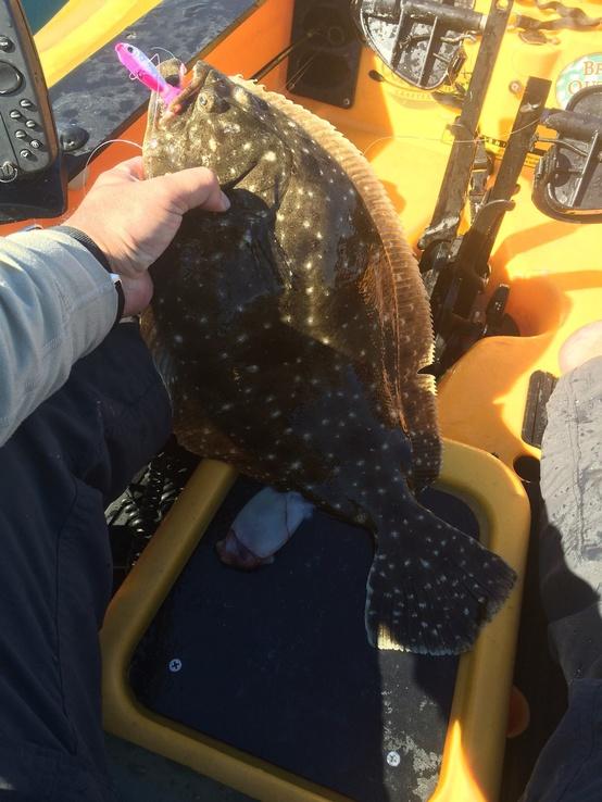 Flounder and Mako-image-jpg