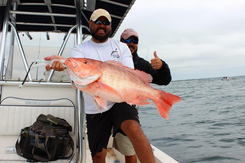 Red Snapper inshore?-image-jpg