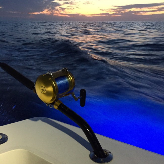 GET SHORTY Late Offshore Report-image-jpg