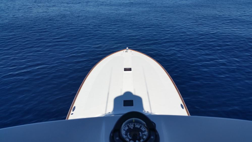 Blue marlin, tuna, wahoo and dorado-image-jpg