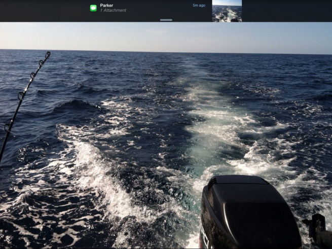 5/29 blue water Report-image-jpg