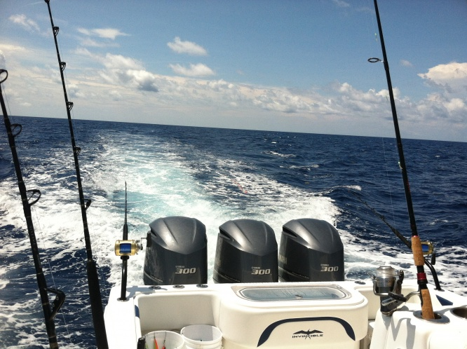 Gulf coast outboard classic report-image-jpg