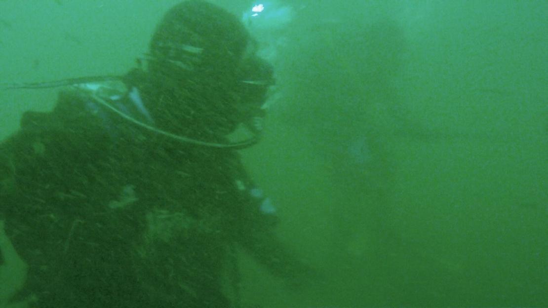 Jan. 15th dive - More AJ's & Sheephead-image8-jpg