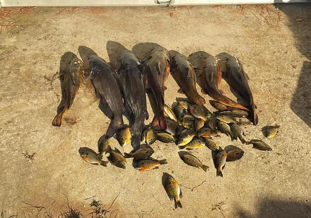 """got fish""-image_1445737442967-jpg"