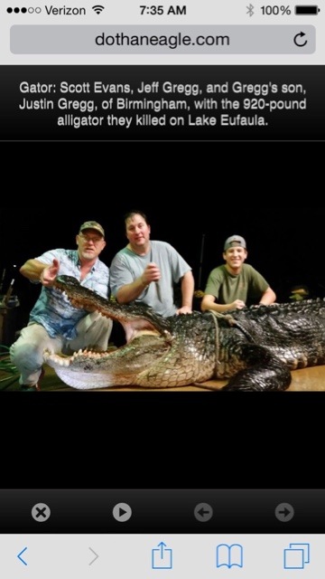 Another big Bama gator-imageuploadedbytapatalk1440419990-385671-jpg