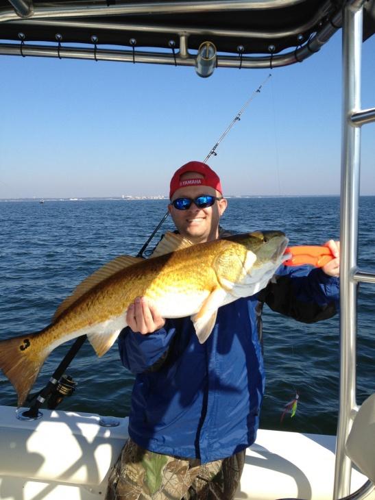redfish-img950823-jpg