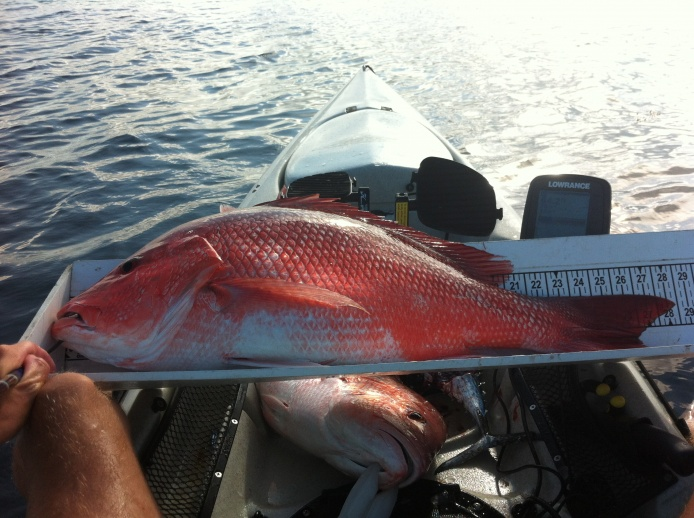 Sailfish and some beast red snapper-img_0321%5B1%5D-jpg