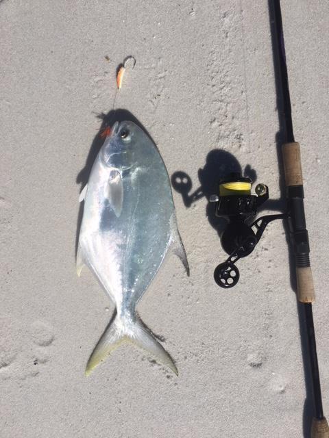 Sight Fishing-img_0339-jpg