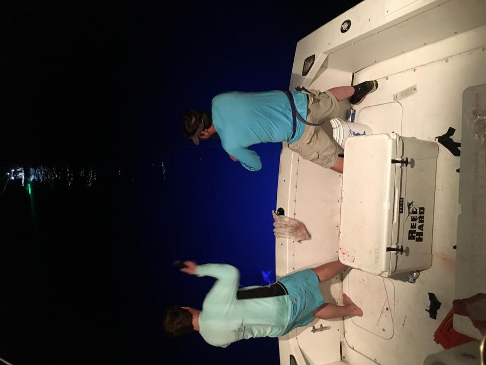 Fishing on the Reel Hard 4-23-16- rig trip-img_0607-jpg