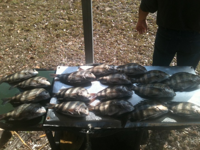 fishing report,past 2 weekends-img_0808-jpg