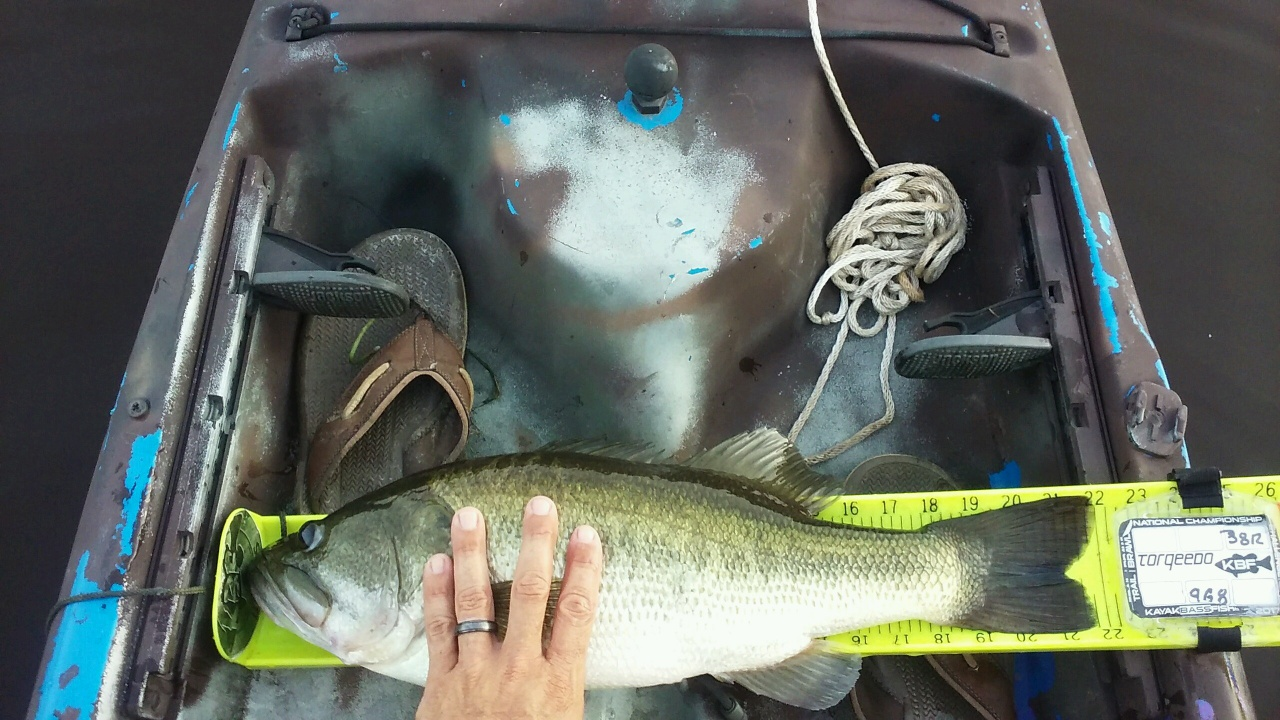 Bass Fishing 8/25/17-img_1076-jpg