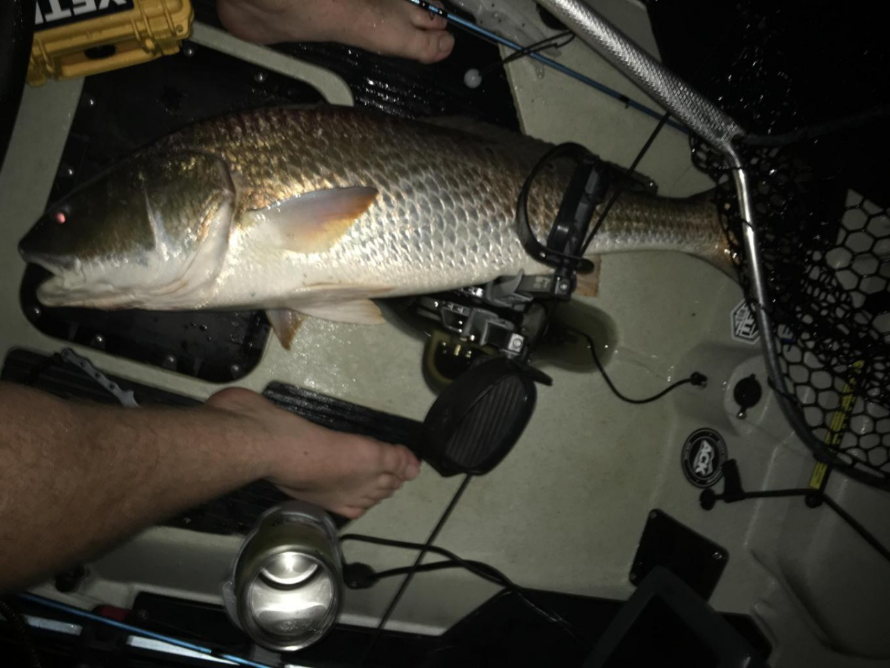 Fat Tuesday redfish-img_1643_1518585977045-jpg