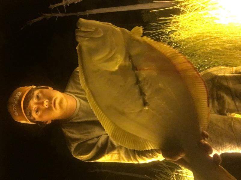Huge Flounder! Help me win a contest!-img_1648-jpg