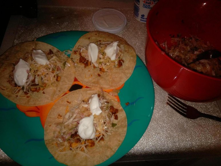 sail cat tacos with mexican slaw-img_20150715_1303534_rewind_1436989886812-jpg
