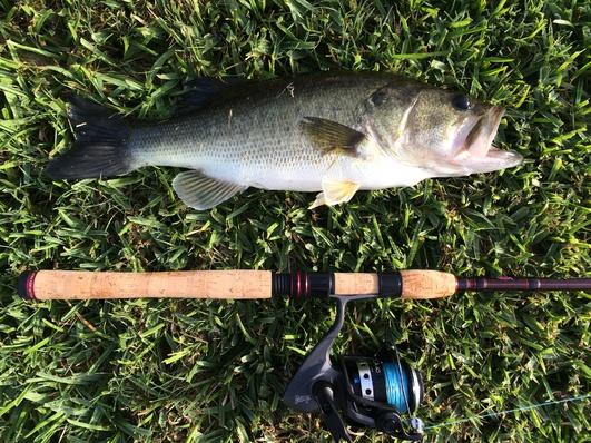 I'm back and been fishin!!!!-img_2103-jpg