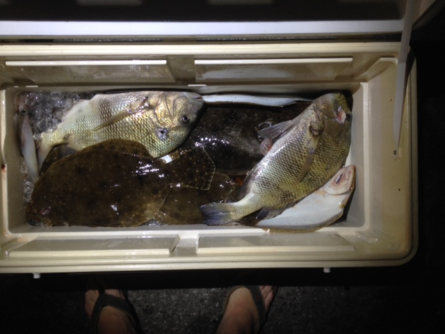 Flounder dive tonight-img_2327-jpg