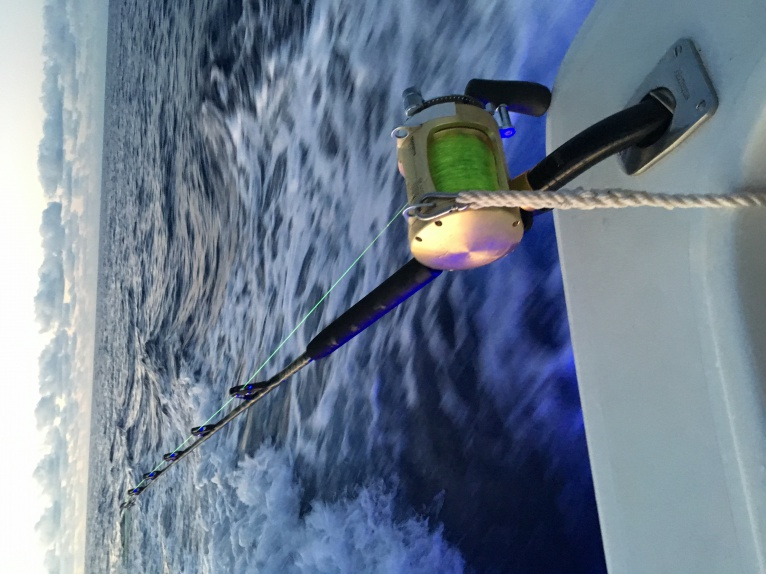 Another Great weekend of fishing offshore-img_3435%5B1%5D-jpg