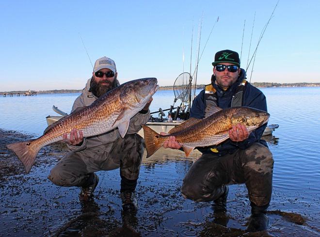 Upper Bay Bull Reds! 12-20-15-img_3919_pe-jpg