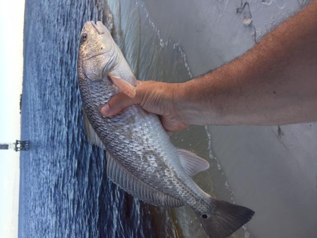Fishing NAS-img_4618-jpg