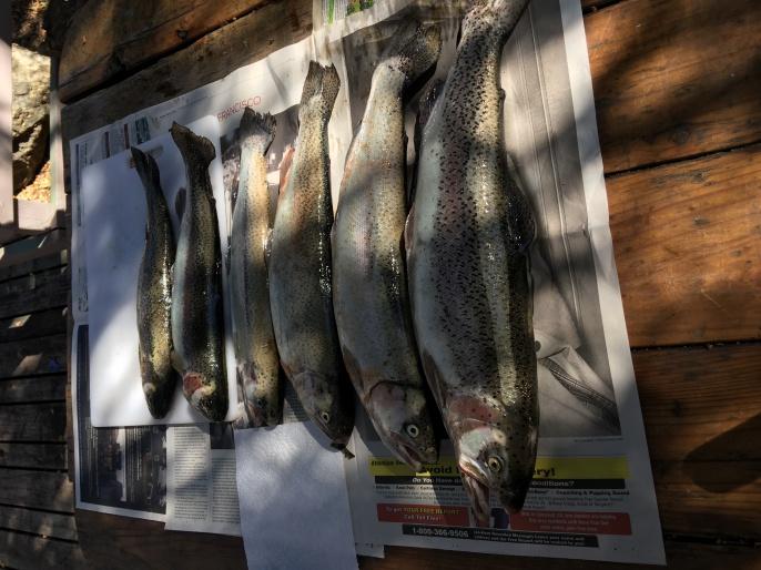 CA/CO fishing/scouting trip-img_7324-jpg