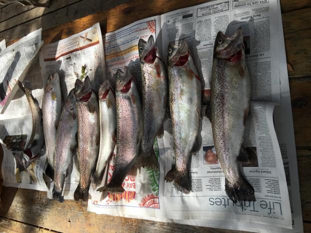 CA/CO fishing/scouting trip-img_7334-jpg
