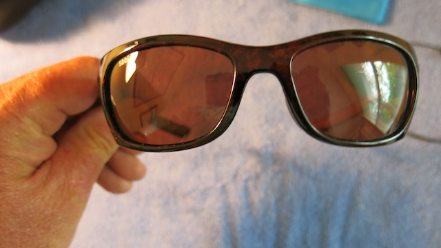 NWT Costa Trevally Sunglasses FS-img_9229-jpg