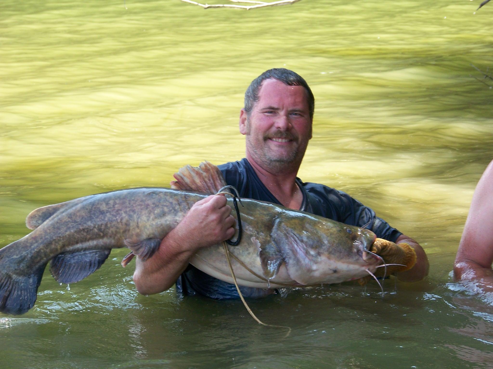 Decent catfish-june-12-006-jpg