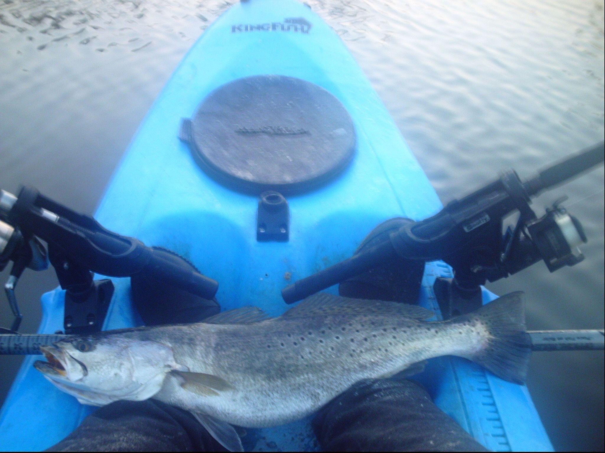 Went Fishing Early This Morning-kayakwarstrout26-5-4-10-09-jpg