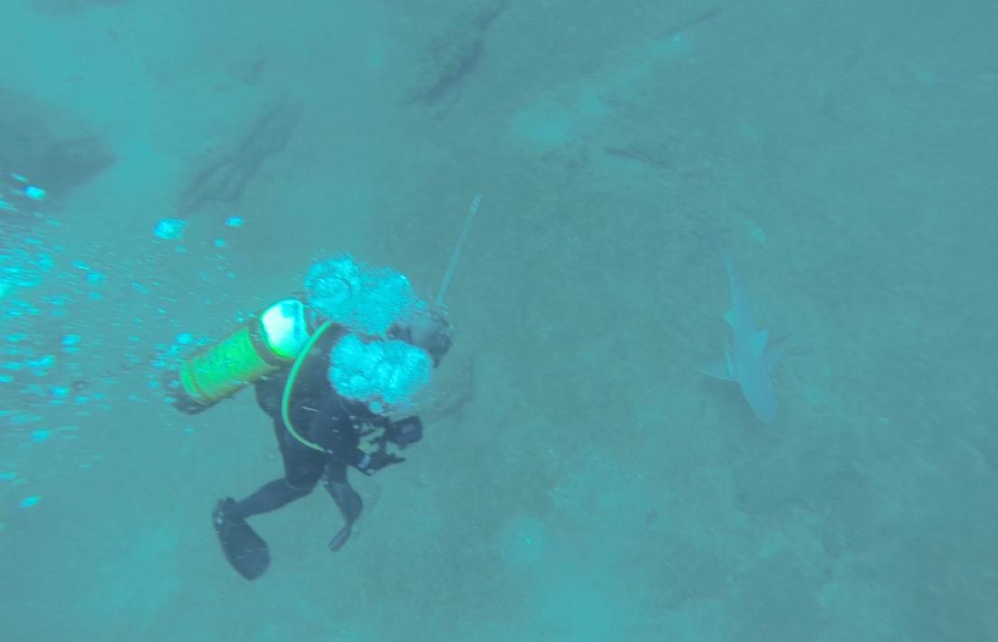 GoPro goes black-kevin-sharktryslergrounds-jpg