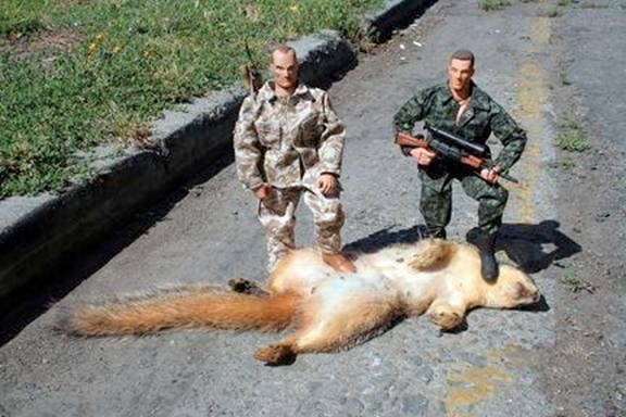 Squirrel Issues-matt-brack-jpg