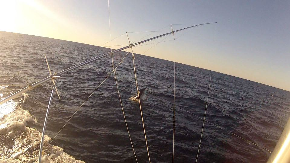 Fished an hour....-missbabbie1-jpg