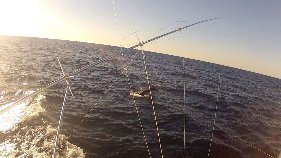 Fished an hour....-missbabbie2-jpg