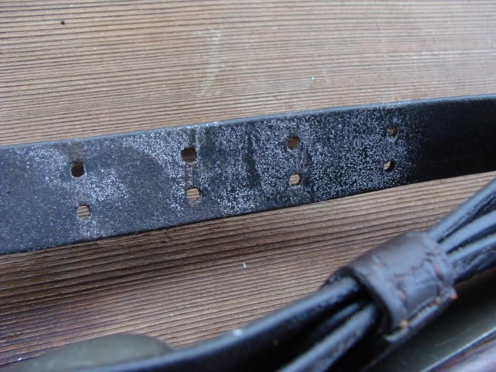 Gun safe dehumidifier????-mold-jpg