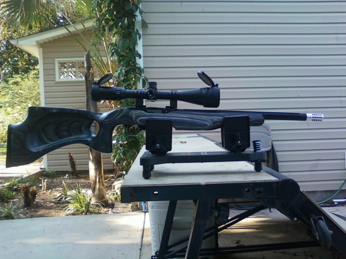 Sorry i just don't get the ruger 10/22 fascination-new-gun-005-jpg
